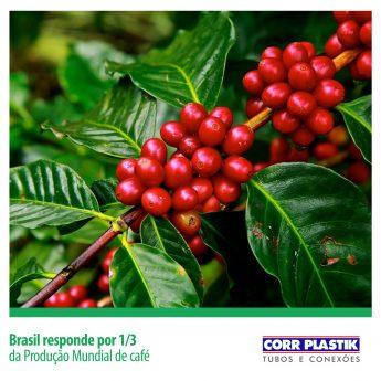 Brasil responde por 1/3 da produção mundial de café