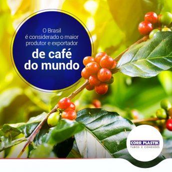 dia internacional do cafe
